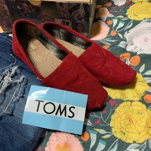 Toms original corduroy with box and sticker